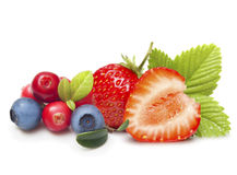 Разный вид изолированных плодоовощей ягоды Стоковые Изображения