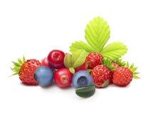 Разный вид изолированных плодоовощей ягоды Стоковое Изображение RF