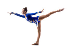 Разработка балерины Стоковые Изображения
