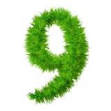 разрешение травы купели высокое изолированное Стоковое Фото