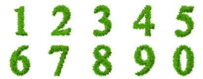 разрешение травы купели собрания высокое Стоковые Изображения RF