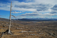 разрушая земля Стоковое Изображение RF
