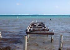 Разрушение пристани в Белизе стоковая фотография rf
