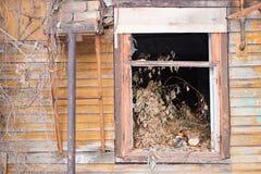 Разрушенное окно в деревянном доме Стоковая Фотография RF