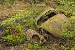 Разрушенный автомобиль жука в лесе Стоковые Фотографии RF