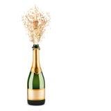 разлейте шампанское по бутылкам Стоковые Изображения RF