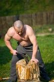 разделяя древесина Стоковое Изображение RF