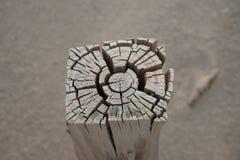 разделенная древесина Стоковая Фотография RF