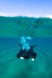 Разделенное фото взгляда с мужским заплыванием водолаза акваланга под водой Стоковая Фотография RF