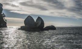 Разделенное яблоко Abel Tasman NP новое Zeland Стоковое Фото