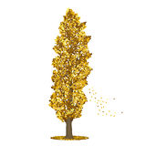 Разделенный тополь дерева с желтыми листьями Стоковая Фотография