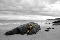 Разделенный утес на пляже Стоковые Изображения RF