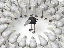 Различная ворона Стоковые Изображения