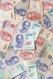 Различная въетнамская валюта Стоковые Фото