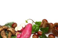 Различная еда осени Стоковые Фотографии RF