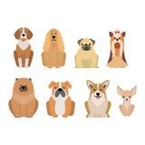Различная порода собак на белизне Стоковые Изображения