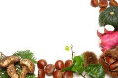 Различная рамка еды осени Стоковое Изображение RF