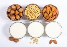 Различное молоко vegan - питье vegan Стоковые Изображения