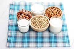 Различное молоко vegan Стоковое Изображение