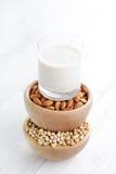 Различное молоко vegan Стоковое фото RF