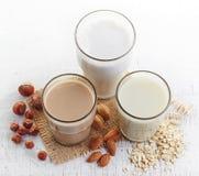 Различное молоко vegan Стоковое Изображение RF