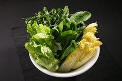 Все виды овощей Стоковое Изображение RF