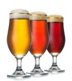 Различное пиво стоковые изображения rf