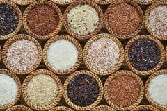 Различное собрание риса на лозе Стоковое Изображение RF