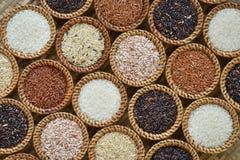 Различное собрание риса Стоковое Изображение