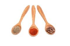 Различные виды перца в 3 деревянных ложках Стоковое фото RF