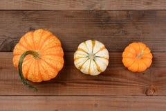 Различные декоративные тыквы Стоковая Фотография RF