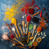 Различные индийские специи в деревянных ложках и шарах металла, травах, семенах и гайках Натуральные продукты, здоровый образ жиз Стоковые Фото