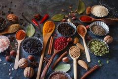 Различные индийские специи, гайки и травы в деревянных ложках и шарах металла Стоковое фото RF