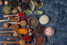 Различные индийские специи, гайки и травы в деревянных ложках и шарах металла Стоковое Изображение