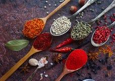 Различные индийские специи, гайки и травы в деревянных ложках и шарах металла Стоковая Фотография