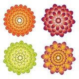 Различные образцы цветков. Стоковые Изображения RF