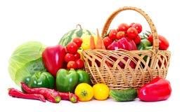 различные овощи комплекта стоковое изображение rf