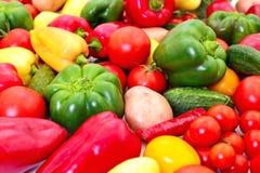 различные овощи комплекта стоковые изображения