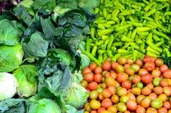 Различные овощи Стоковые Изображения RF