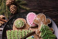 Различные печенья имбиря Стоковые Изображения RF