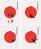Различные птицы Стоковое фото RF