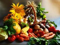 Различные плодоовощи лета Стоковые Фото