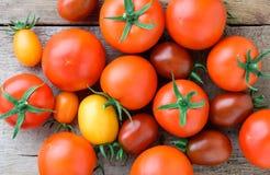 различные разнообразия томатов Стоковая Фотография RF