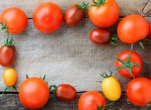 различные разнообразия томатов Стоковые Изображения RF