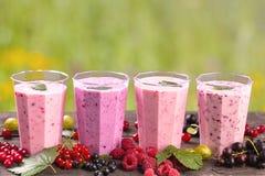 Различные свежие smoothies ягод стоковое фото