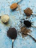 Различные семена в ложке на голубой предпосылке Стоковые Фото