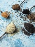Различные семена в ложке на голубой предпосылке Стоковое фото RF