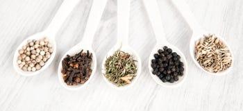 Различные специи и травы в деревянных ложках на белой предпосылке таблицы Черно-белый перец, гвоздичное дерево, смачное, семена ф Стоковые Изображения RF