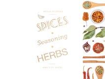 Различные специи и травы на белой предпосылке Взгляд сверху Стоковое Изображение