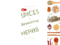 Различные специи и травы на белой предпосылке Взгляд сверху Стоковые Фото
